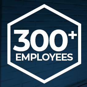 About-us-300-employees