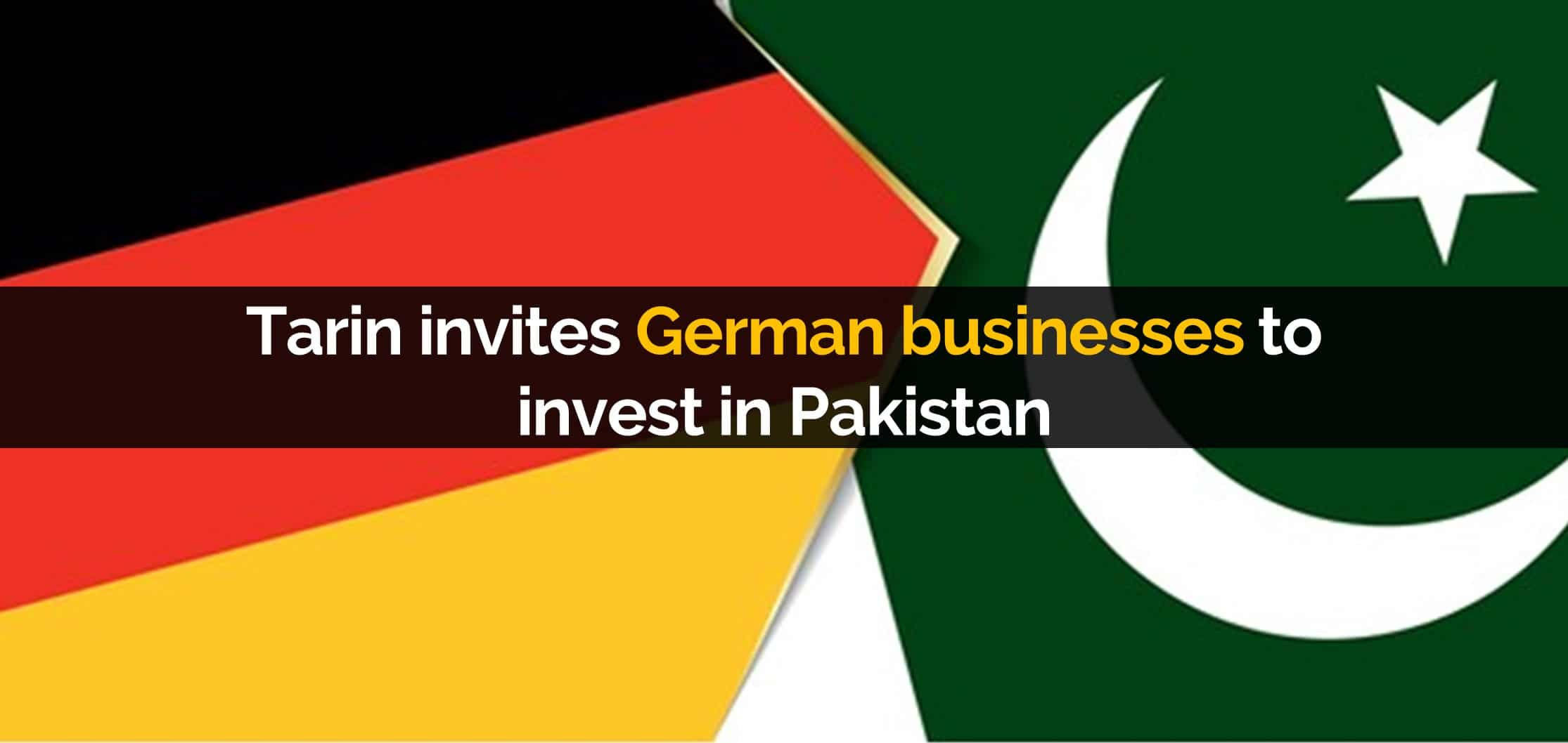 Tarin invites German businesses to invest in Pakistan